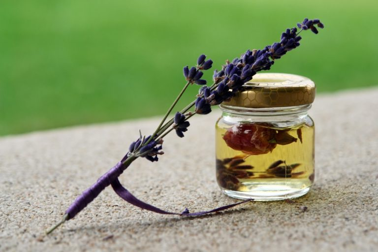 Essential Oils vs Fragrance Oils: What's the Difference?